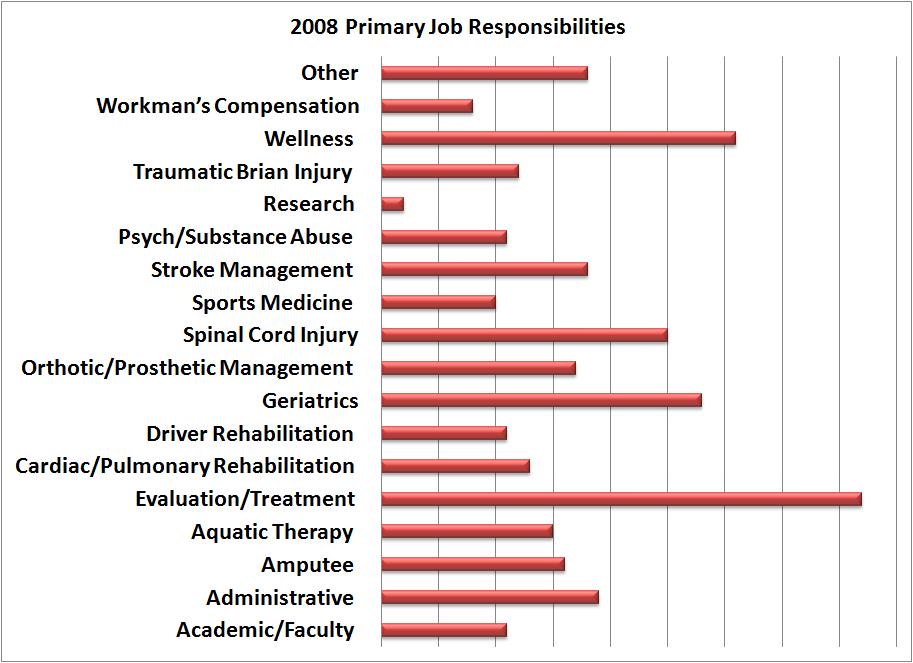 2008 Primary Job Responsibilities