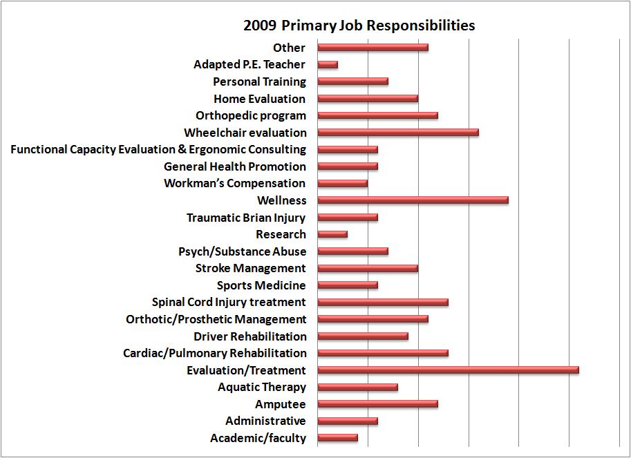 2009 Primary Job Responsibilities